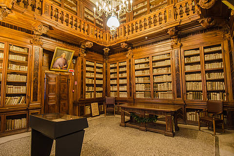 La biblioteca Guarneriana